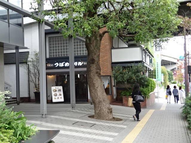 アップルジム二子玉川店までの道のり3